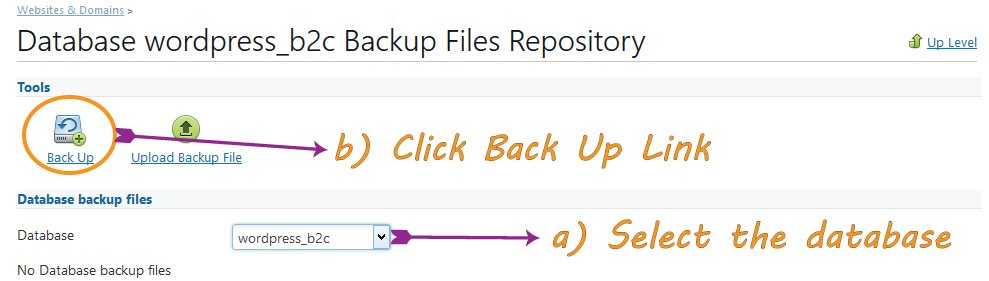 Backup Icon in Plesk Panel