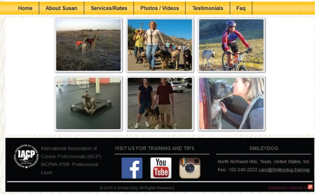 How Video Gallery Looks in Page