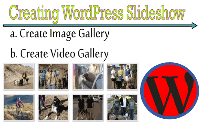 Creating WordPress Image Gallery with Easy Media Plugin