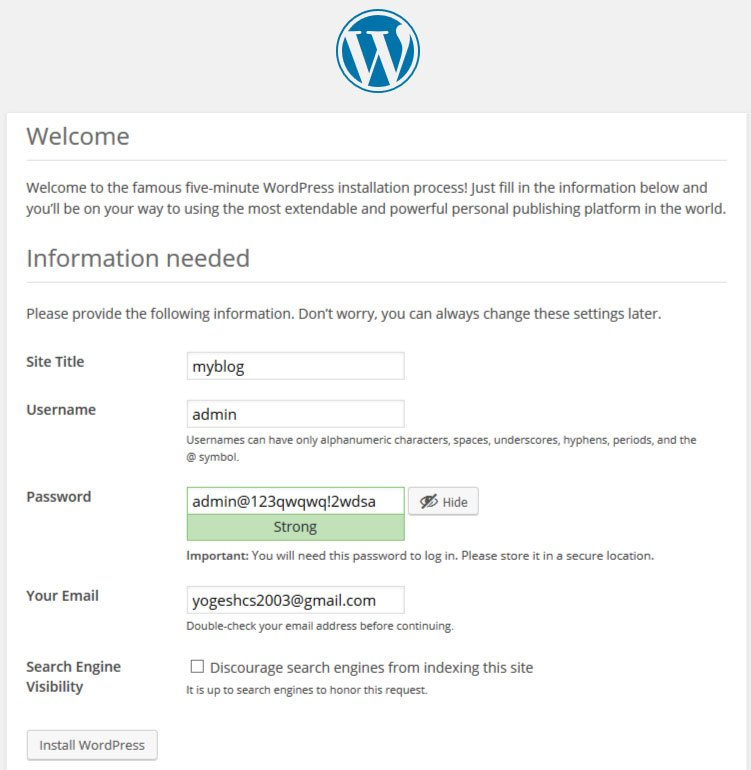 Setting up your website during WordPress Install