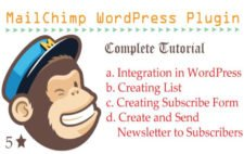 How to Use MailChimp WordPress Plugin to Create Subscribe Form and Send Emails