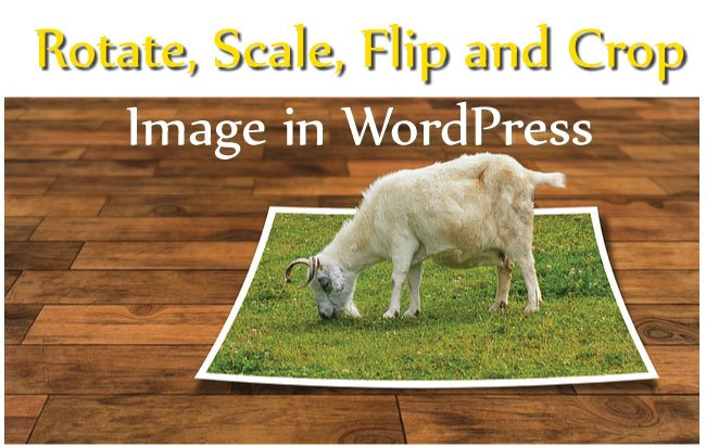 Tutorial with Images – Rotate, Scale, Flip and Crop Image in Your WordPress Site Easily