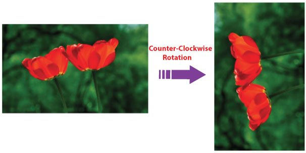 rotate image in counter clockwise direction