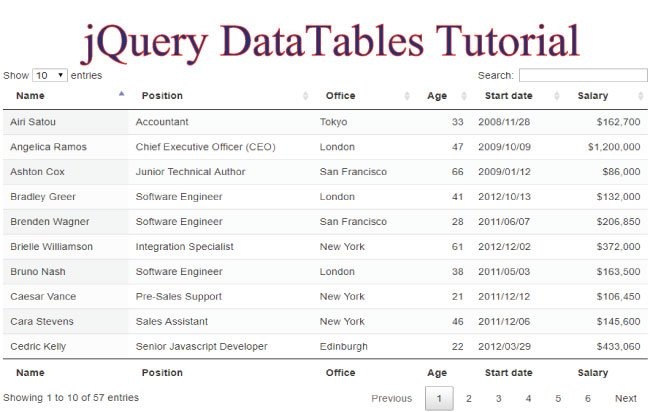 Learn jQuery DataTables in 2 minutes - Tutorial with Codes