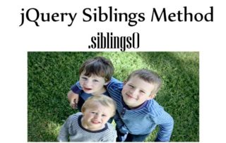 Learning jQuery Siblings Method – .siblings()