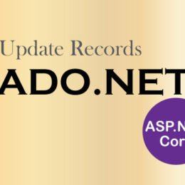 update records ado.net aspnet core