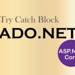 try catch block ado.net