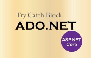 How to use Try Catch Block to Catch Exceptions