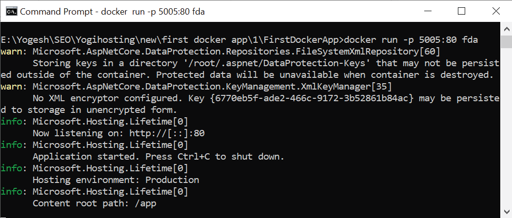 docker run bind port